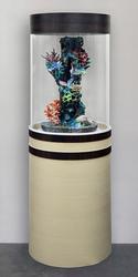 Цилиндрический аквариум для Ваших рыбок 150л
