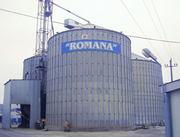 реализация и доставка муки пшеничной хлебопекарной всех сортов,  отрубе